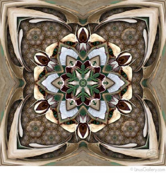 southern california art galleries pattern 576x600 Patterns Artist Karen Hochman Brown | Arbol Con Vid