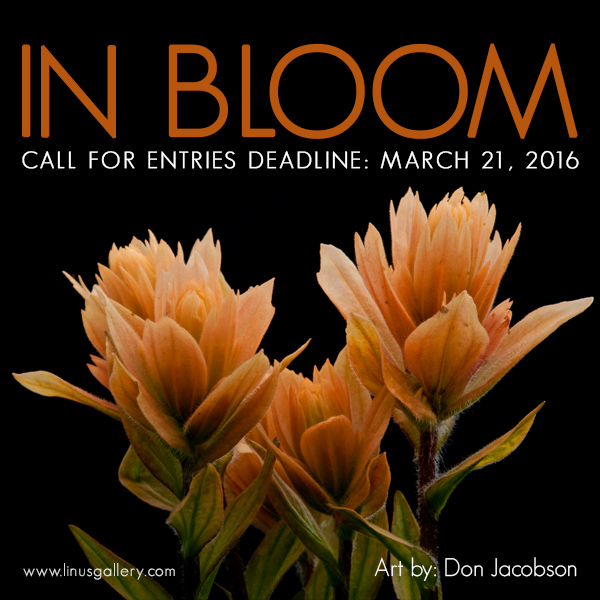 In Bloom Call for Entries